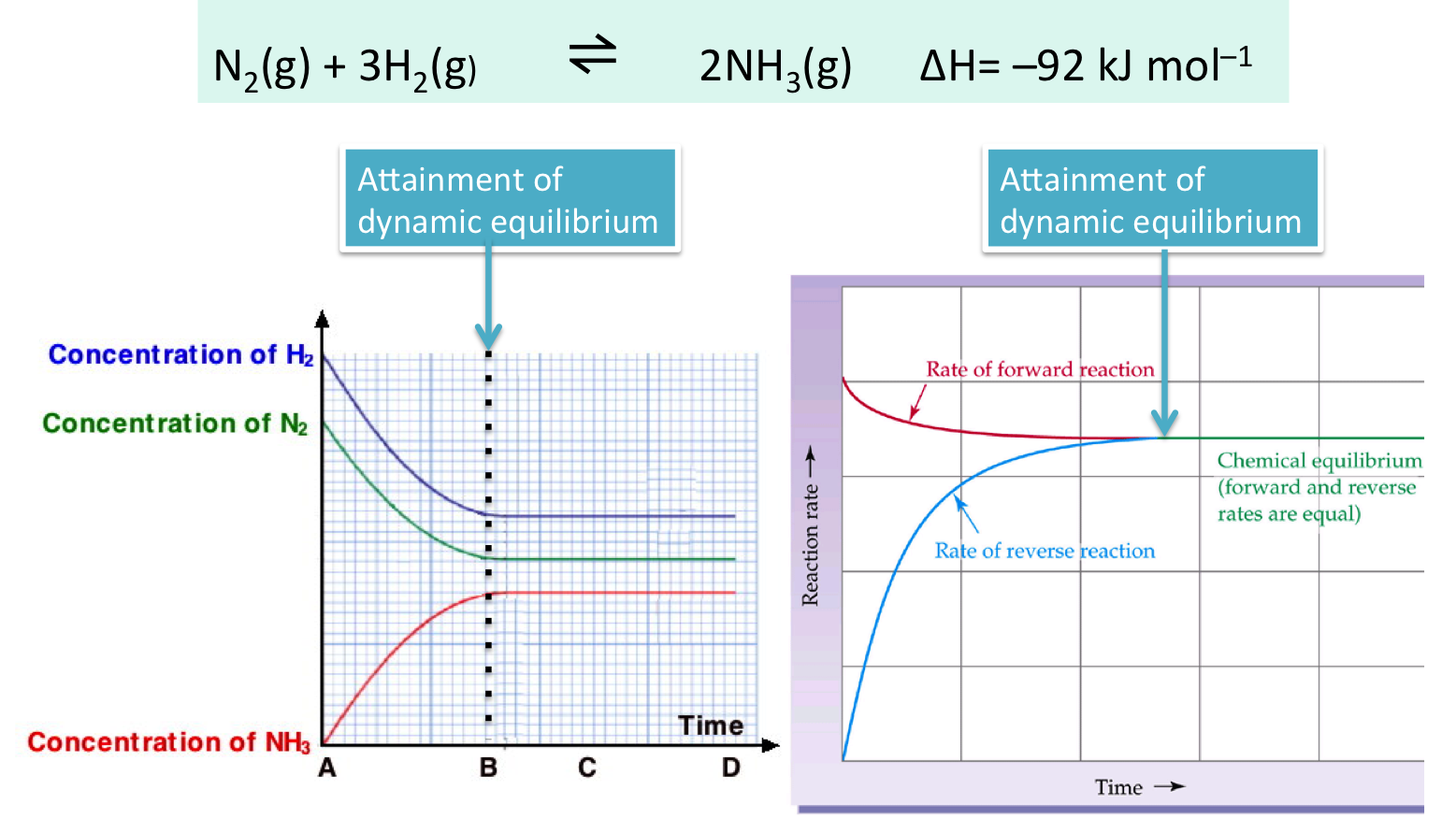 concentration on rate of reaction science The effect of concentration on reaction rate the influence of concentration over reaction rate by measuring the volume of for science practical outline of.