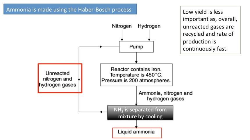 born haber process ammonia