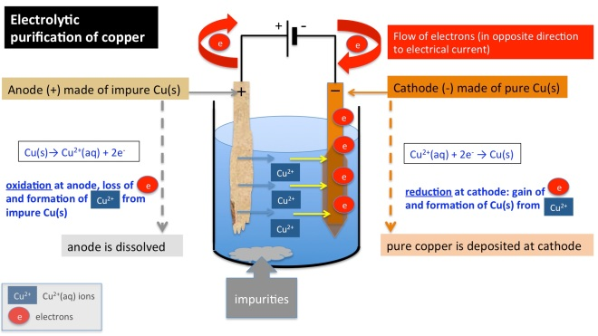 Electrolytic purification of copper