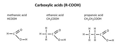 GCSE carboxylic acids
