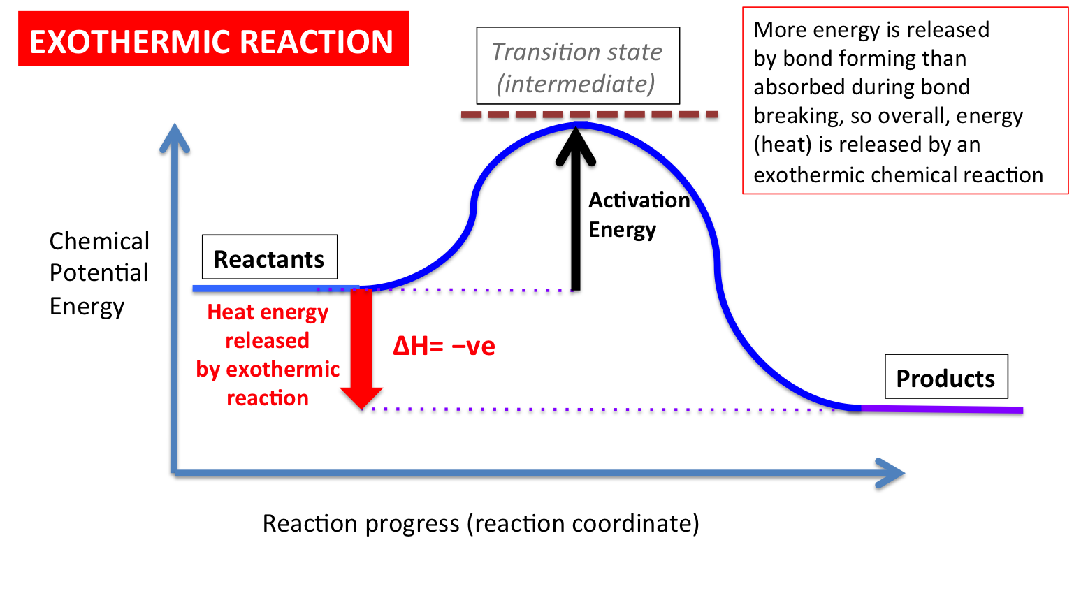 Endothermic Reaction Diagram For Water Great Installation Of Example State Transition Reactions Secondary Science 4 All Rh Secondaryscience4all Wordpress Com Simple Examples