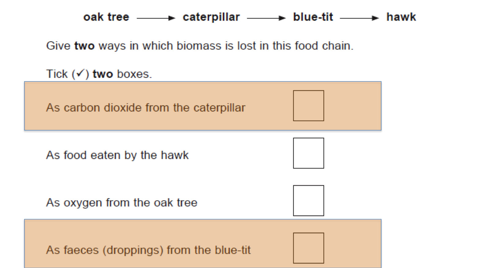 B15 energy and biomass in food chains secondary science 4 all lesson urtaz Images