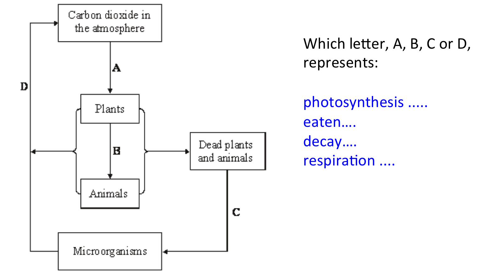 Decaying Plants To Coal Diagram Web About Wiring Hydro Power Plant B1 6 Waste Materials From And Animals Secondary Science 4 All Rh Secondaryscience4all Wordpress Com Hydropower